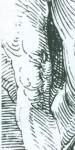 Штриховка в технике «широкого штриха»